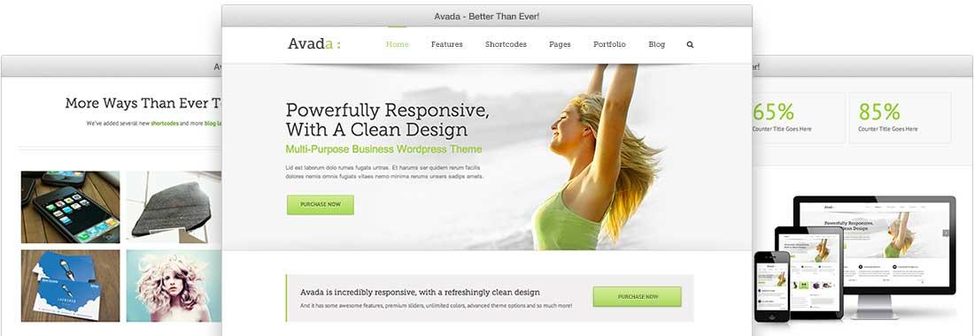 Avada Theme Image